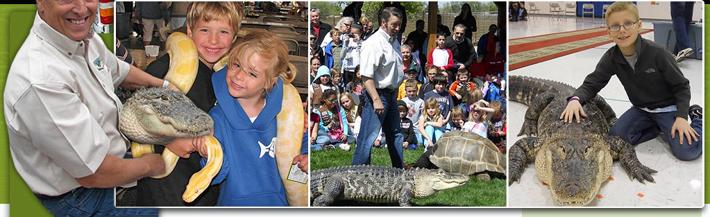 Cold Blooded Creatures | Reptile Show | Reptile Educational Program